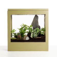 MuddyToesgarden_window_box_small-1-300x300