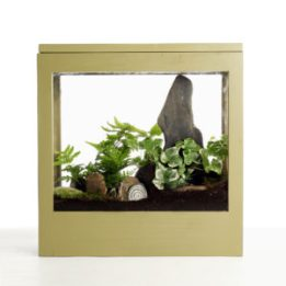 MuddyToesgarden_window_box_small-1-300x300